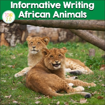 African Animals Research