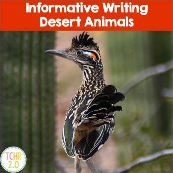 Desert Animals Research