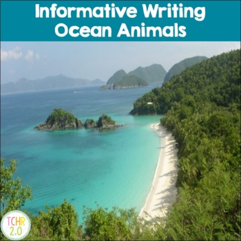 Ocean Animals Research