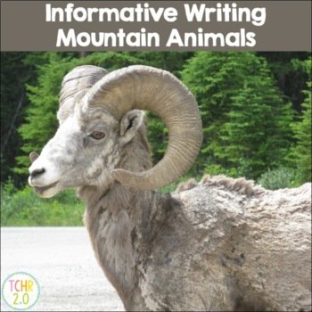 Mountain Animals Research