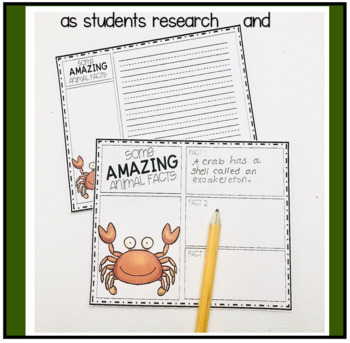 Information Writing about Ocean Animals