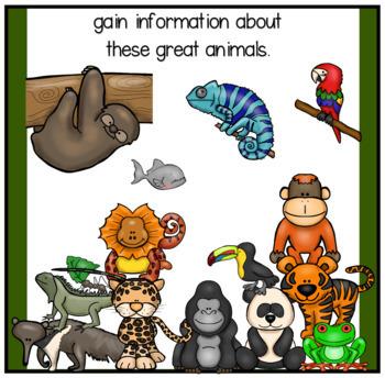 Informative Writing about Rainforest Animals