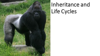 Inheritance and Life Cycles (NGSS)