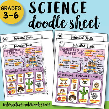 Inherited Traits Doodle Notes Sheet - So EASY to Use! PPT included