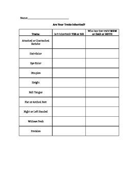 Inherited Traits Worksheet