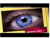 Inherited Traits and Learned Behaviors POWERPOINT WITH NOTES- 5th science