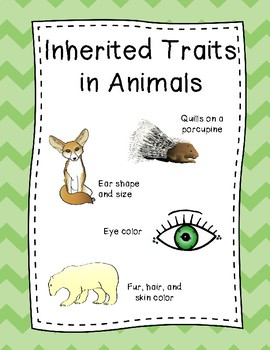Inherited Traits and Learned Behaviors Posters