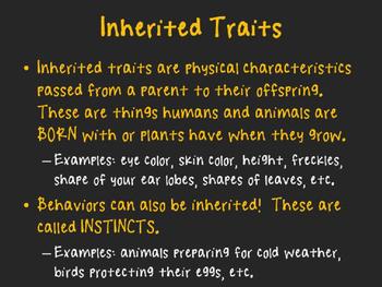 Inherited Traits vs. Learned Behaviors
