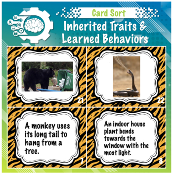 Inherited Traits vs learned behavior card sort