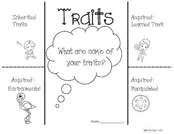 Inherited and Acquired Traits Foldable