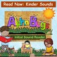 Read Now~ Kindergarten Sounds: Alphabet Reader