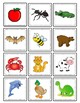 Initial Letter Sounds Sorting Cards | AZ Practice