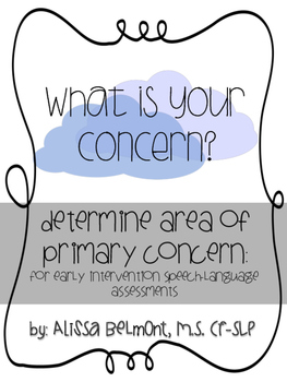 What is your concern? Determine area of primary concern: for EI SLT assessments