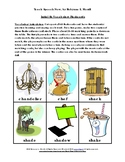 Initial Sh and Ch Vocabulary Flashcards