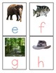 Initial Sound Cards - Montessori - Pre - reading