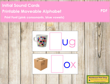 Initial Sound Cards for Printable Moveable Alphabet PRINT - Pink/Blue