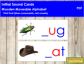 Initial Sound Cards for Wood Moveable Alphabet PRINT - Blue/Red