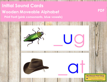 Initial Sound Cards for Wood Moveable Alphabet PRINT - Pink/Blue