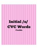 Initial /s/ CVC words