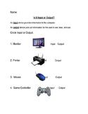 Input Output Worksheet
