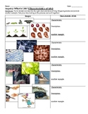Inquiry Activity: The Characteristics of Living Things