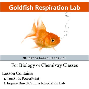 Cellular Respiration Lab - Inquiry Based Goldfish Lab -  Metabolism Experiment
