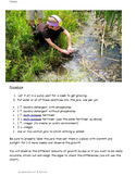 Inquiry Based Learning and Scientific Method for Water Pollution NO PREP
