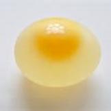 Inquiry Egg Diffusion Lab