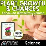 Plants Unit, Inquiry, STEM