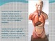 Inroduction to Anatomy