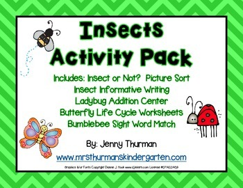 Insect Activity Pack
