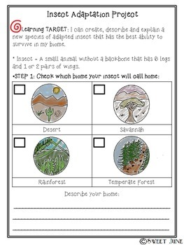 Insect Adaptation Project