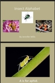Insect Alphabet reading pack