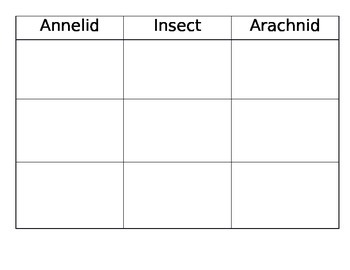 Insect, Annelid, Arachnid sorting chart and cards