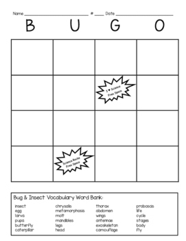 Insect BUGO (bingo style) insect vocabulary