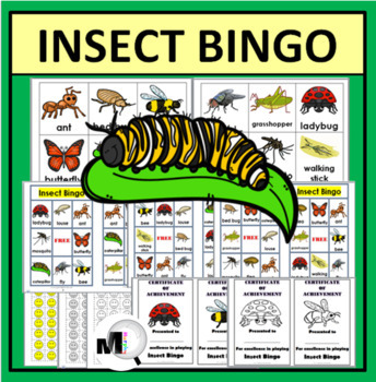 Bingo Printable - Insects Bingo Game - Insect Activity - Insect Literacy