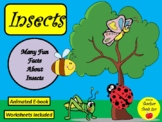 Insect Book