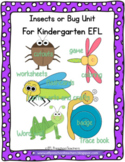 Insect or  Bug Theme for  Preschool ELL