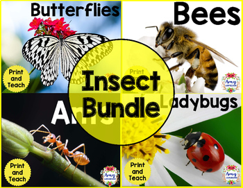 Insect Reading Bundle