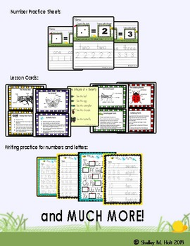 Insect Bundle: Math and Literacy Packet