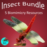 Insect Bundle - STEAM Biomimicry