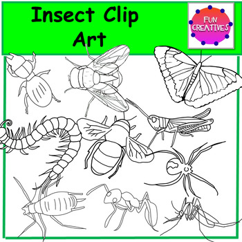 Insect Clip Art