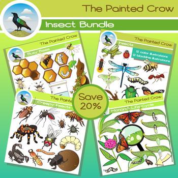 Insect Clip Art Bundle - 100 Piece Entomology Set - Color