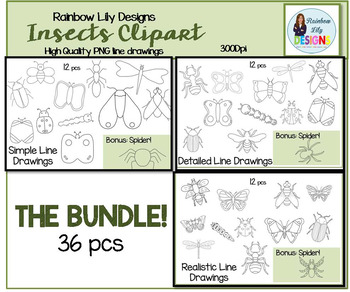 Insect Clipart -Bundle Simple Detailed and Realistic