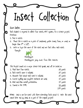 Insect Collection Project with Grading Rubric