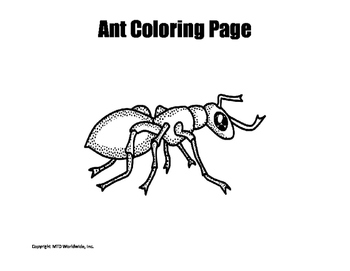 Insect Coloring Pages Bundle