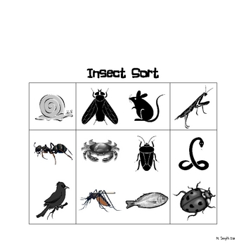 Insect  Column Sort