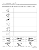 Insect Compound Words Freebie!