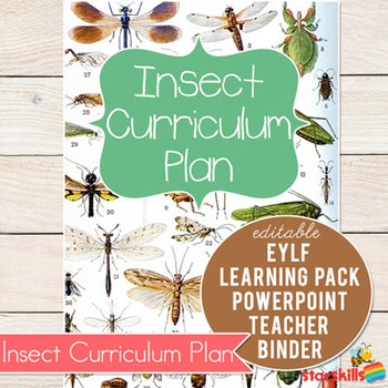 Insect Curriculum Plan
