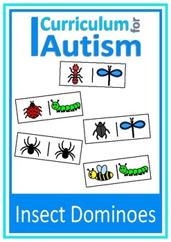 Insect Dominoes Game Autism